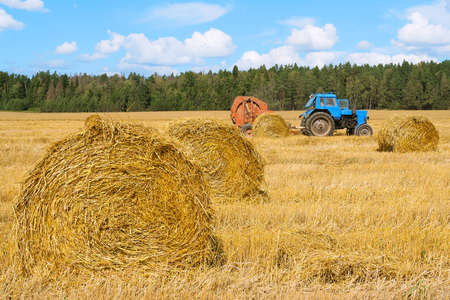 Tractor at work in the field. Agriculture, farm