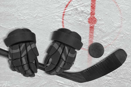 Fragment of the hockey field with a central circle, stick, gloves and washer. Concept, hockey