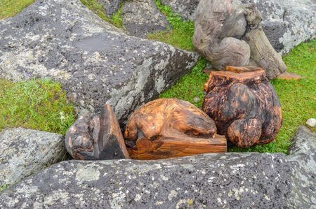 Several Wood Carvings were found amidst the rock outcroppings in the Orkhon Waterfall Area.