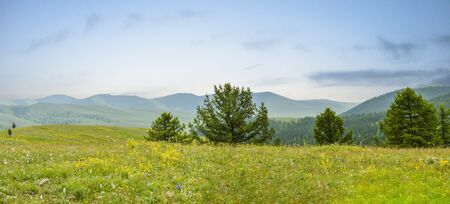 View From Mongolian Mountain Panorama. You can see for miles upon miles.
