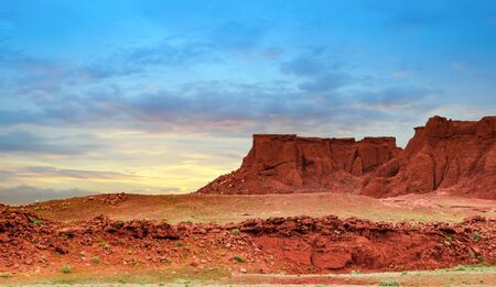 Wild goats eat scrub-brush on sides of the Flaming Cliffs of Mongolia. Stock Photo