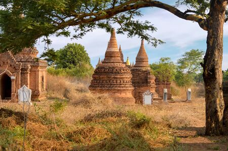 Small Section of Multiple Stupas and Pagodas Under the Trees in the Bagan Field of Temples Stock Photo