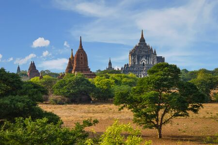 Shwesandaw Pagoda and Multiple Reddish Stupas Among the Trees in Bagan, Mayanmar Stock Photo