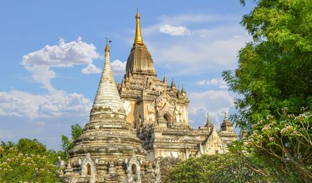 Large White Temple and Stupa Surrounded By Trees in Bagan Field