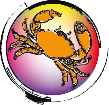 Crawfish. vector illustration Vector