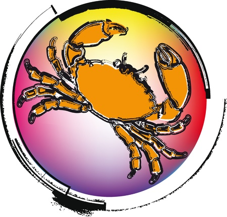 crawfish: Crawfish. vector illustration Illustration