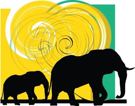 head wise: Elefant illustration