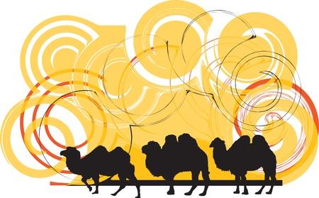 running camel: Camel illustration