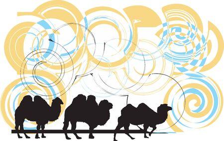 Camel illustration Vector