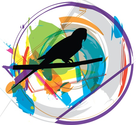 parrot tail: Parrot illustration Illustration