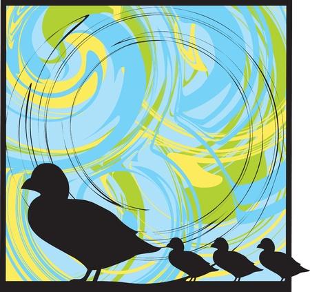Ducks illustration Vector