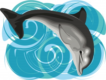 dolphin fish: Dolphin vector illustration Illustration