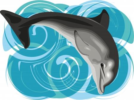 delfini: Illustrazione vettoriale Dolphin