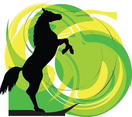 horse show: Horse vector illustration Illustration