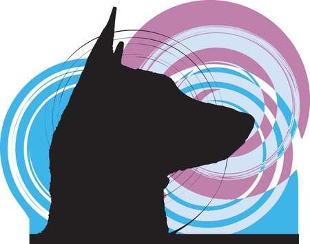 husky: Dog, vector illustration