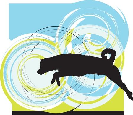 obediência: Dog, vector illustration