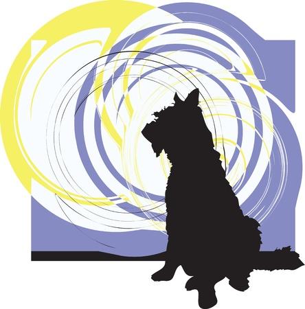 obedience: Perro, ilustraci�n vectorial Vectores
