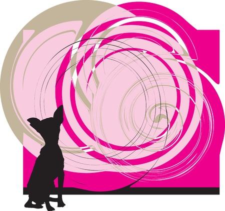 samoyed: Dog, vector illustration