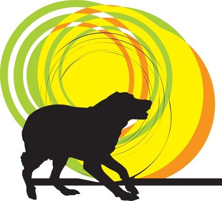 hunter playful: Dog, vector illustration