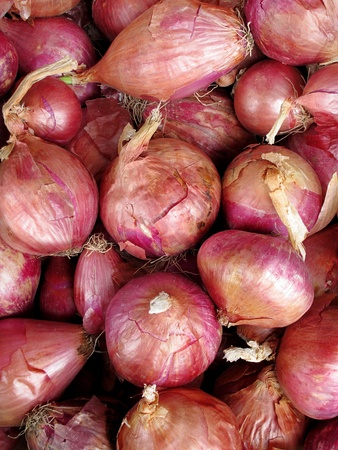 aftertaste: Close-up of fresh red onions