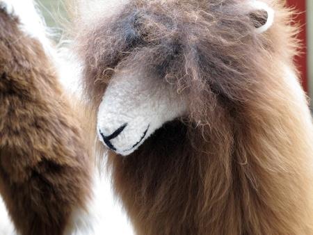 teddy llama, Peruvian souvenir Stock Photo - 11195958