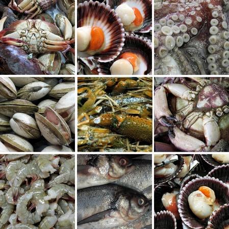 Seafood photo