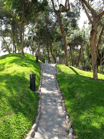 Garden stone path with grass growing up photo