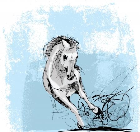 horse races: Dibujado a mano dibujo de funcionamiento caballo blanco. Vectores