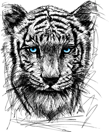 tattoo face: Sketch of white tiger