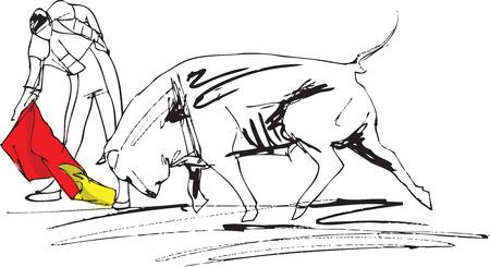 bullfight illustration Vector