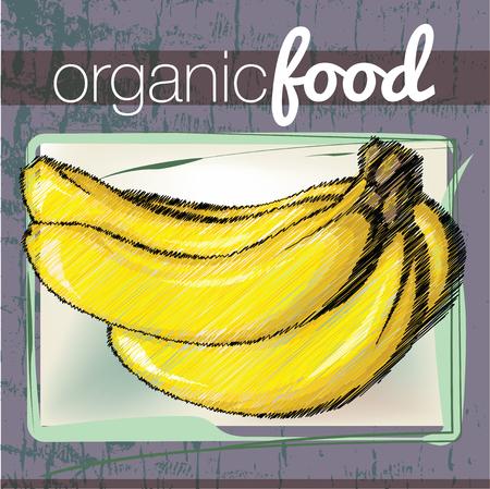 Organic Food illustration Vector