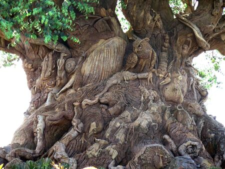 The Tree of Life in the Animal Kingdom Park, Disney World, Florida photo