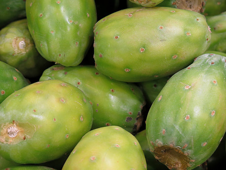 prickly pear: Prickly pear, delicious tropical fruit