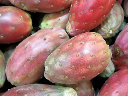 prickly pear: Red prickly pear, delicious tropical fruit