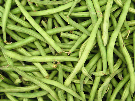 species of creeper: fresh green bean species for sale at the Farmers Market