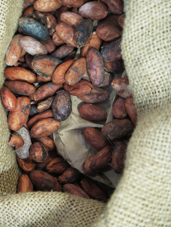 carbohydrates: Raw roasted cocoa beans background