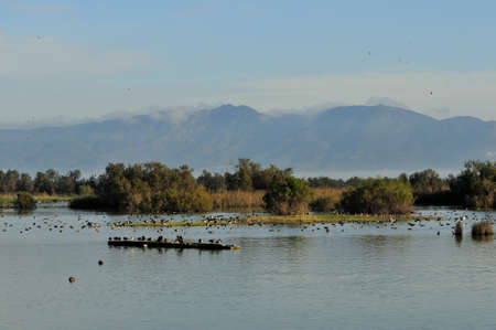Aiguamolls emporda is a important nature reserve in Girona Spain