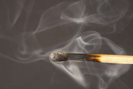 combustible: A match is a combustible tool for lighting a fire