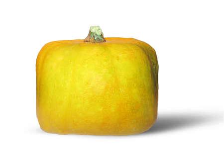 Cube golden pumpkin on white background photo