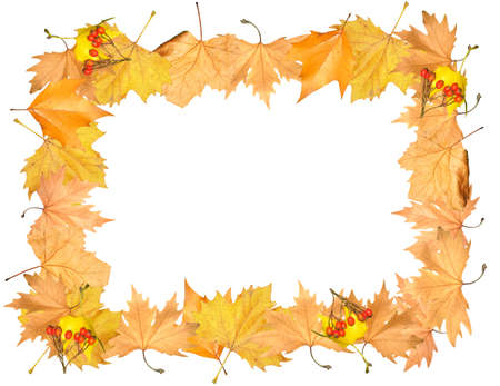 Frame of autumn yellow leaves with empty place for your image photo