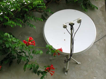 Parabolic satellite antenna on the house wall in a residential area photo