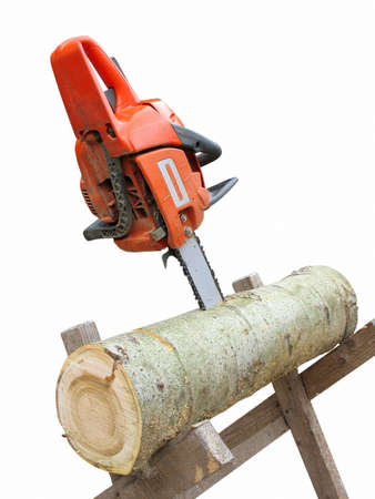 power saw: chain saw in cut of wooden log isolated over white background
