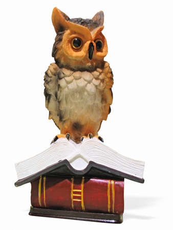 Owl on opened book isolated over white background photo
