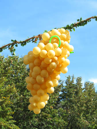 Flying yellow balloons in the form of grapes over blue sky background photo