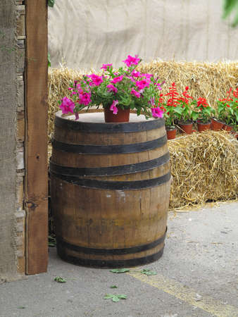 Old classic wooden barrel with flowers and hay background - rural view photo