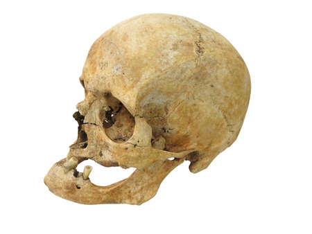 Grim Reaper: Old archaeological find human skull cranium isolated on white background