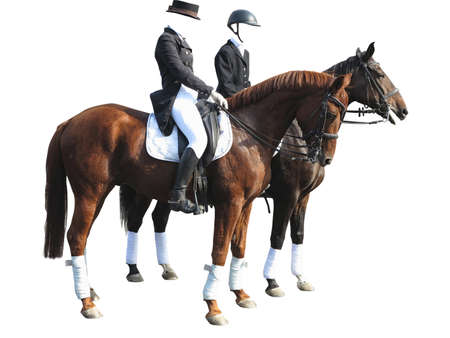 eventing: Dressage rider man and woman with two horses isolated on white background Stock Photo