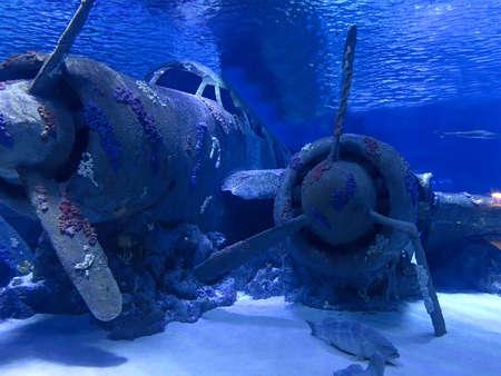 Vecchio aereo d'epoca annegato in fondo al mare