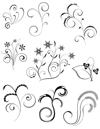 curve lines: decorative curves with flowers and leaves Illustration