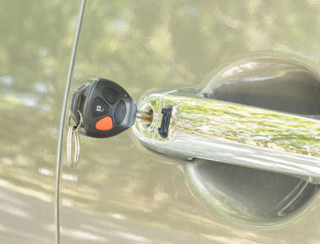 forgot: forgot car key on car door